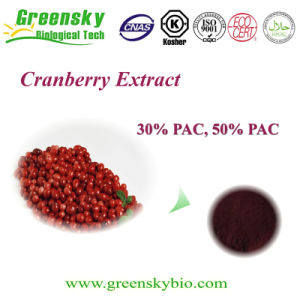 Greensky Dried Cranberry Extract with 50% PAC pictures & photos