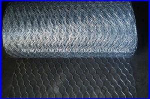 Hot Sale 30m/Roll Galvanized Hexagonal Wire Netting pictures & photos