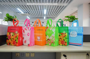 Non Woven Laminated Box Bag with Bottom Gusset Machine pictures & photos