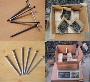 Hot Sale Polished Common Iron Wire Nails/Building Common Nails pictures & photos