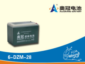 12V24ah Maintenance Free Battery for E-Bike, Motorcycle, Scooter, Golf Cart