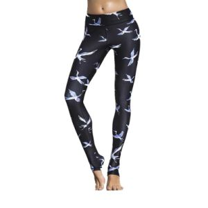 Compress Custom Fitness Leggings Wholesale Yoga Tights for Women pictures & photos