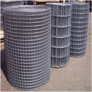 Low Carbon Galvanized Welded Wire Mesh pictures & photos