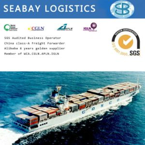 Sea Freight Rates From China to India pictures & photos