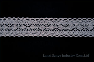 Low Price Crochet Lace for Lingerie pictures & photos