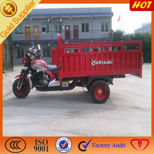 Hot Selling for 3 Wheeled Cargo Truck pictures & photos