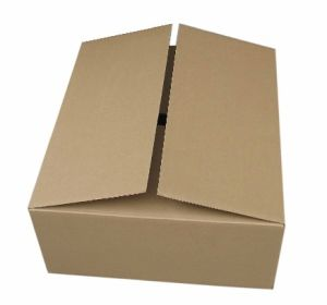 Flute Corrugated Master Cartons pictures & photos