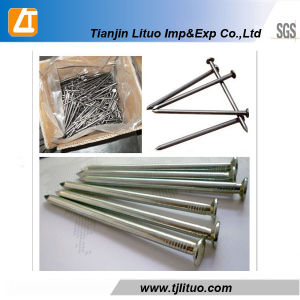 High Quality 1/2′-3′ Polished/Galvanized U-Type Nails pictures & photos