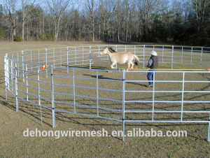 Security Fence for Farm, Livestock Fencing pictures & photos
