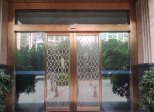 Copper Plated Stainless Steel Automatic Door (DA-SS03) pictures & photos