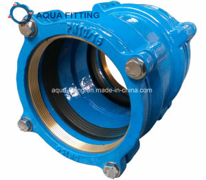 Restrained Coupling and Flange Adaptor for PE Pipe