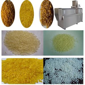 Twin Screw Extruder Nutritional Rice Making Machinery pictures & photos