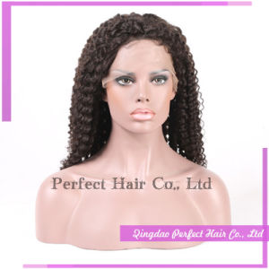 Afro Lace Fronts Short Women′s Wig pictures & photos