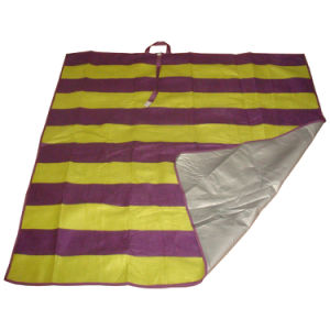 Picnic Camping Beach Blanket for Outdoor pictures & photos