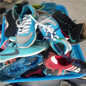 High Quality & Big Size Shoes (FCD-005) pictures & photos