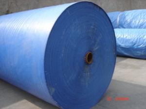 Sea-Blue300d*300d PVC Tarpaulin Fabric