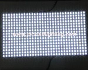 P10 Outdoor White Monochrome LED Display Module (P10) pictures & photos