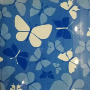 Prime Quality PPGI/PPGL Color Steel Coil with Butterfly Print pictures & photos