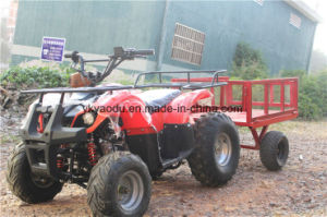 High Quality Factory Price Ce 2-Seat 300cc UTV pictures & photos