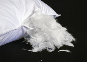 Royal Hotel Luxury White Goose Feather Pillow Bed Linen Pillow pictures & photos