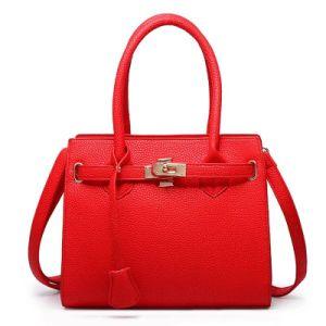2017 New Hot Sale Women Handbag Tote Bag pictures & photos