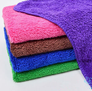 Double Layer Microfiber Coral Towel, Weight: 600G/M2 pictures & photos