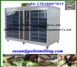 Hydroponic Cattle Sheep Horse Barley Fodder Grass Growing Machine pictures & photos