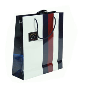 Kraft Paper Gift Bags with Handle (FP900028) pictures & photos