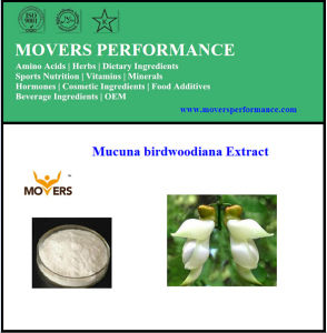 Good Price High Quality Mucuna Birdwoodiana Extract (stem) pictures & photos
