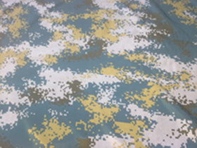 100% Nylon Oxford with Printing Fabric (ZCBP-038)