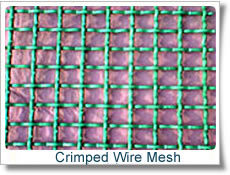 Hot Selling Crimped Wire Mesh S0275