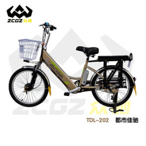 High Quality Brushless Lithium Battery E Electric Bike