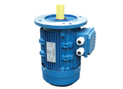 Ie2 Ms Series B5 Three Phase Motor pictures & photos