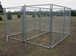 Galvanized Square Pet Cages pictures & photos