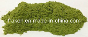 Water-Soluble Wheat Grass Powder / Wheatgrass Juice Powder pictures & photos