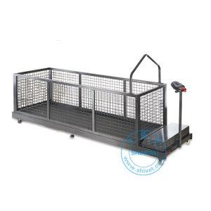 Pet Treadmill (TM-260) pictures & photos