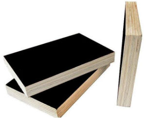 Black Film Faced Plywood, Construction Plywood