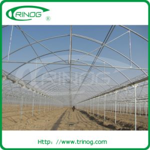 200micro film EU greenhouse for agriculture pictures & photos