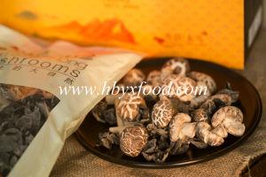 Dried Vegetable Tea Flower Shiitake Mushroom pictures & photos