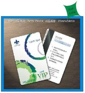 Plastic VIP and Membership Card