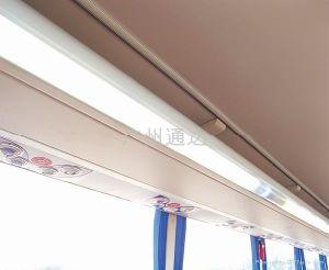 Vehicle Carriage Illumination (XY-2988)
