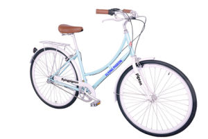 Good Quality Vintage Style City Female Bicycle (FP-LDB-041) pictures & photos