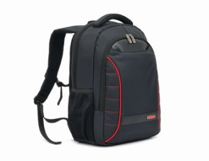 Laptop Computer Notebook Business Fashion Camping Outdoor Leisure Nylon Backpack pictures & photos