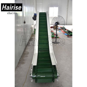 PVC/PU Conveyor Belt Stainless Steel System Manufacturers pictures & photos
