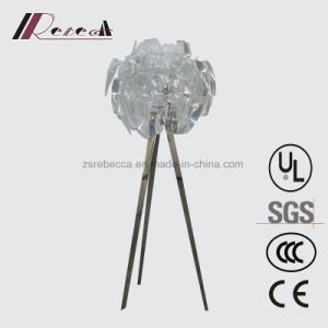 Creative Design Acrylic Sheet Floor Lamp for Living Room pictures & photos