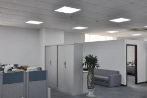 LED Ceiling Lightings 600X600 for Home/Commercial Lighting pictures & photos