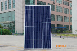 Q-Cells PV Solar Panel / Module / Product Power System 270W 280W pictures & photos