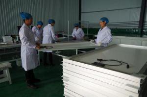 Monocrystalline Solar Panel 300W pictures & photos
