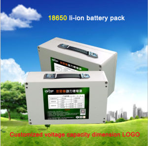 12V 60ah Outdoor Portable High Capacity Lithium Ion Battery Power Bank pictures & photos