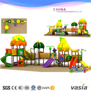 New Style Vasia Outdoor Playground (VS2-160412-33) pictures & photos